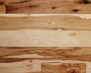 Character Hickory